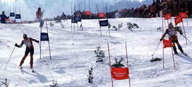 Thöni, sulla sinistra, contro Stenmark nel Parallelo