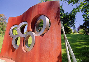 i cinque cerchi olimpici (© CATDvd)